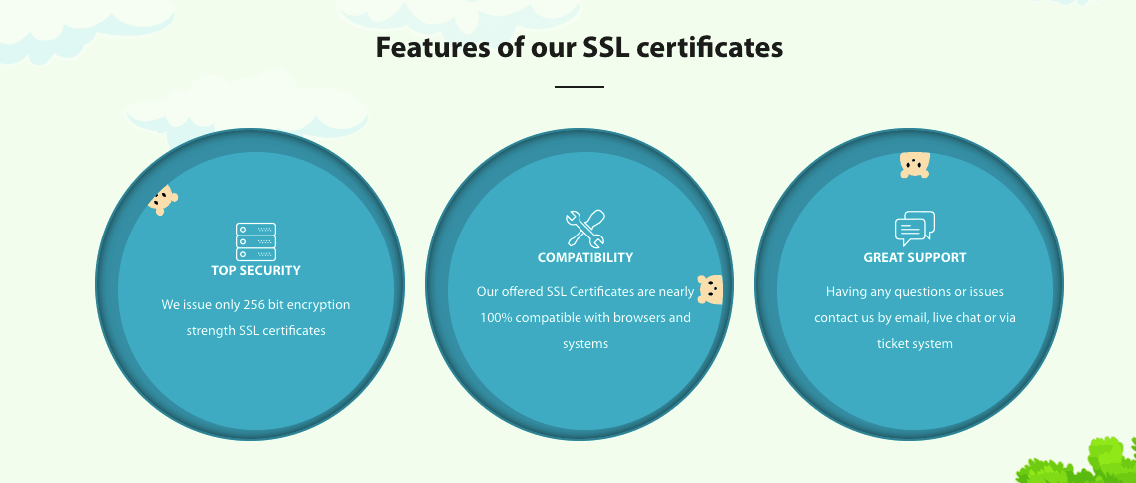 Features of SSL
